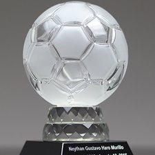Picture for category Soccer Awards