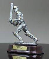 Picture of Classic Cricket Batsman