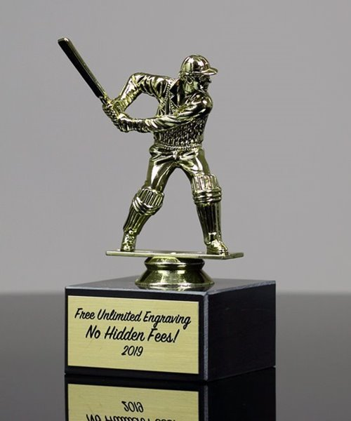 Picture of Cricket Recognition Trophy