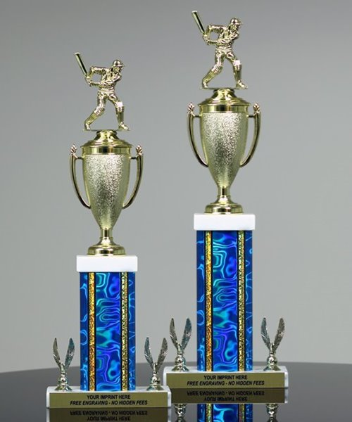 Picture of Victory Cup Cricket Trophy
