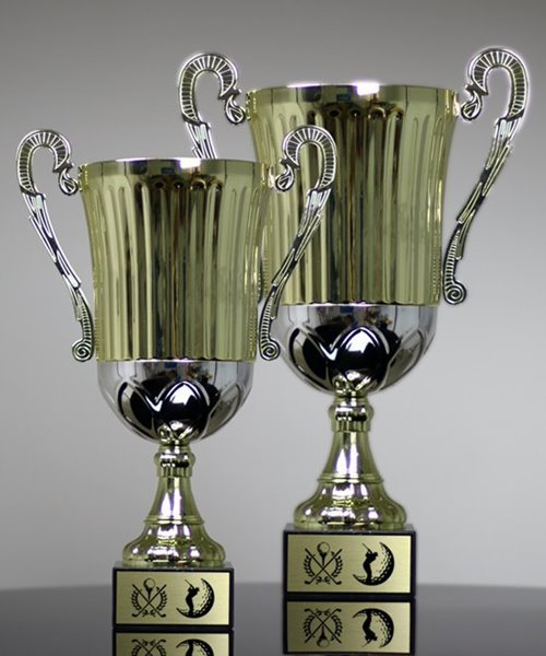 Picture of Two-Tone Metal Trophy Cup