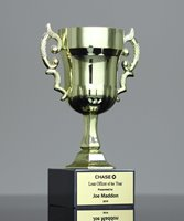 Picture of Mini Euro Trophy Cup