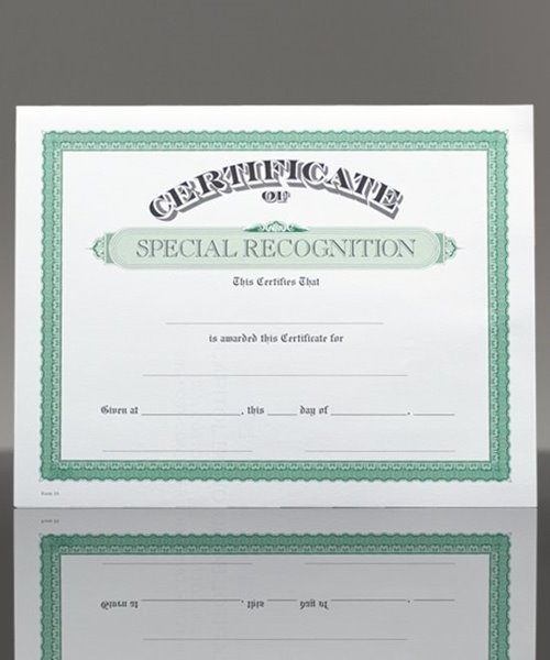 Picture of Certificate of Special Recognition