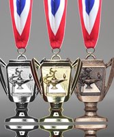 Picture of Knowledge Trophy Cup Medals