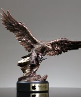 Picture of Ferocity Eagle Award