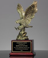 Picture of Achievement Eagle Award
