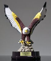Picture of American Eagle Award