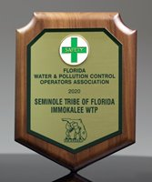 Picture of Safety Award Shield Plaque