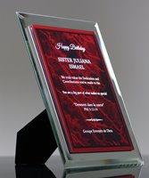 Picture of Synthesis Award Plaque