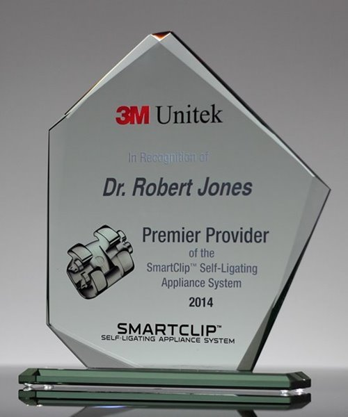 Picture of Crystal Summit Award