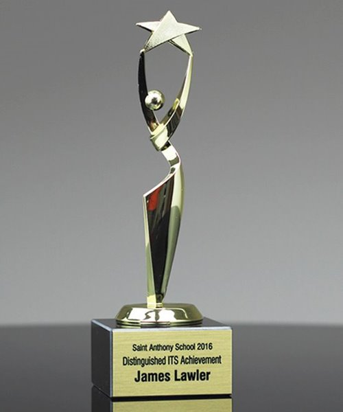 Picture of Reach for the Stars Achievement Award