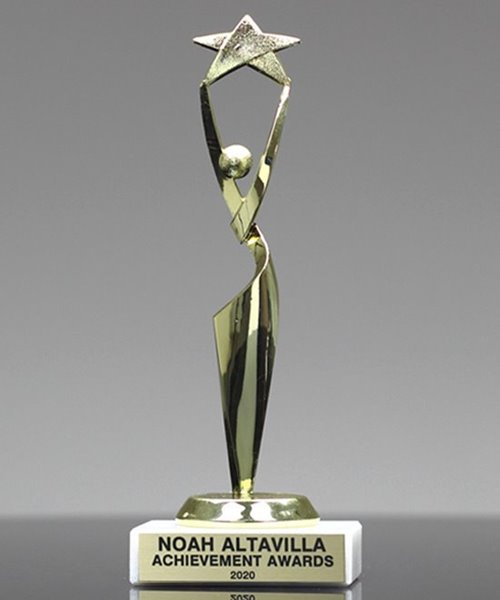 Picture of Reach for the Stars Trophy