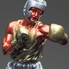 Picture for category Boxing Awards