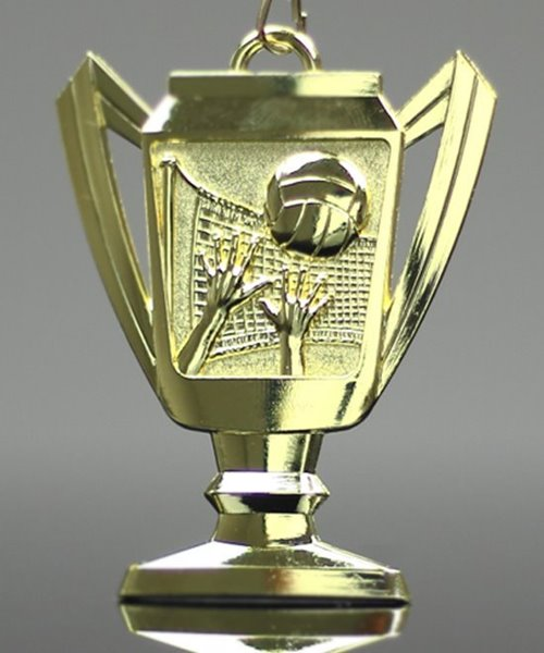 Picture of Volleyball Trophy Cup Medals