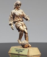 Picture of GR Series Soccer Award