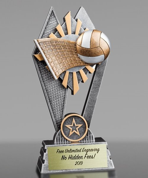 Picture of Sun Ray Volleyball Award