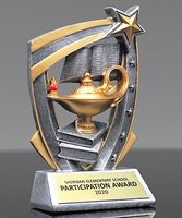 Picture of Academic 3D Star Award