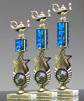 Picture of Academic Star Trophy