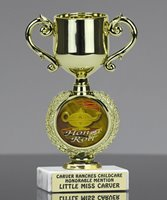 Picture of Academic Theme Trophy Cup