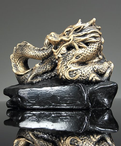 Picture of Golden Dragon Award