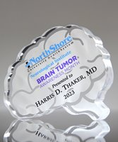 Picture of Custom Brain Paperweight Award