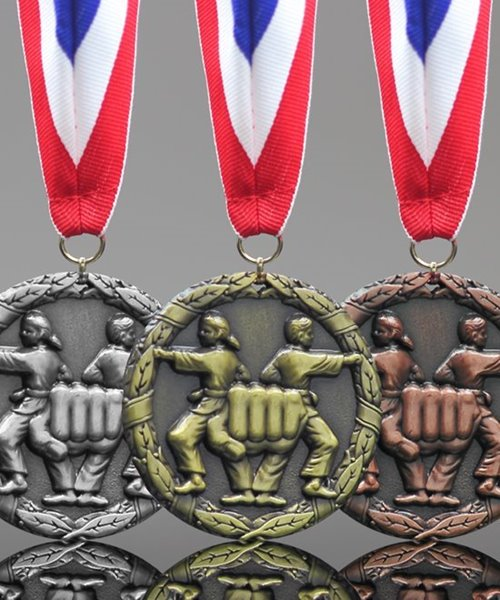 Picture of Classic Martial Arts Medals