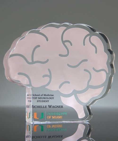 Picture of Acrylic Brain Trophy Paperweight