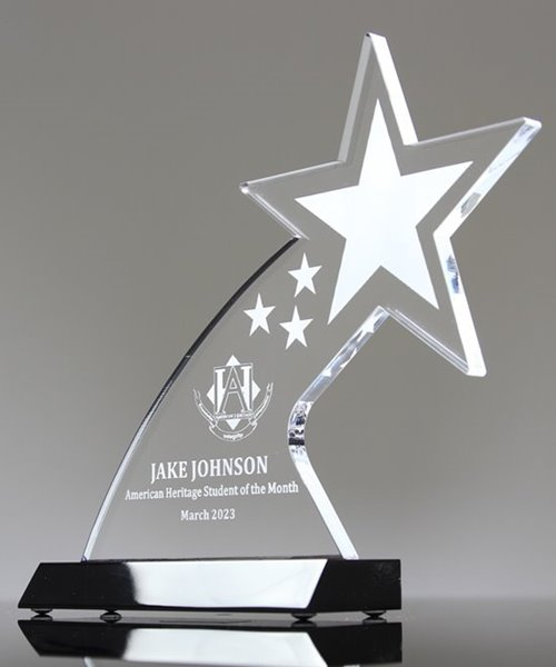 Picture of Shooting Star Award