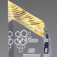 Picture for category Gold Acrylic Awards