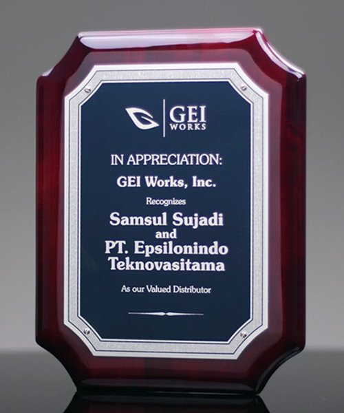 Picture of Conquest Award Plaque