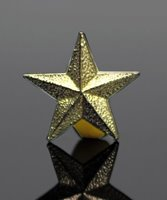 Picture of Gold Star Lapel Pin