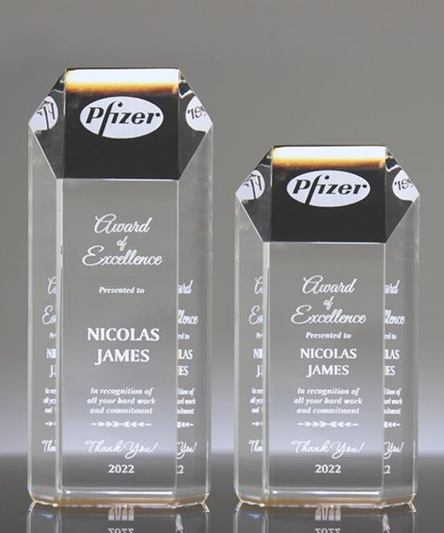 Picture of Ambient Gold Acrylic Hexagon Award