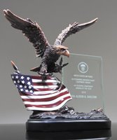 Picture of Patriot Eagle Award