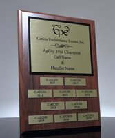 Picture of CPE Perpetual Plaque Award