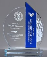 Picture of US Air Force Recognition Award