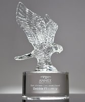 Picture of Leadership Eagle Award