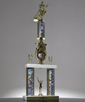 Picture of Star Riser Champion Trophy