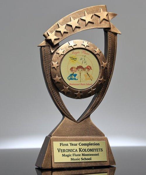 Picture of Star Banner Custom Insert Award