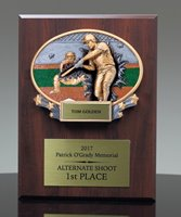 Picture of Xplosion Baseball Plaque Award