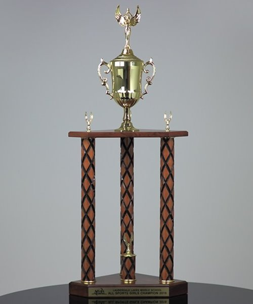 Picture of X-Large Traditional Team Trophy